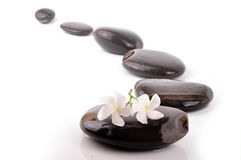 http://www.dreamstime.com/stock-photo-zen-path-image10614990