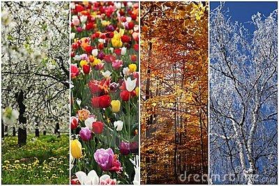 four-seasons-23188099